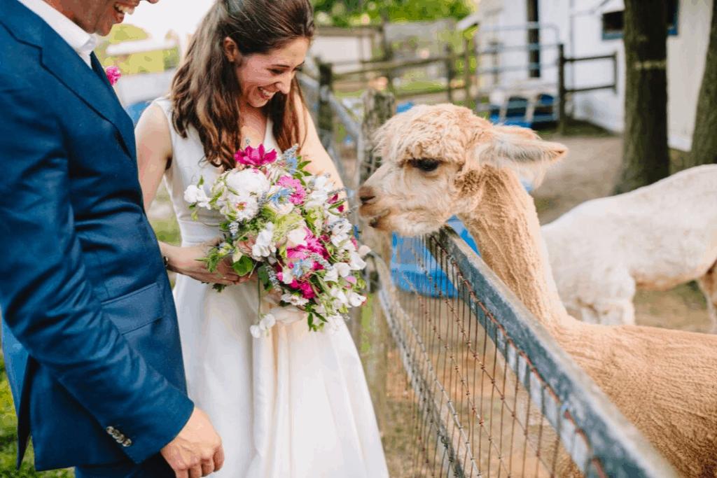 Molly and Zack Farm Wedding